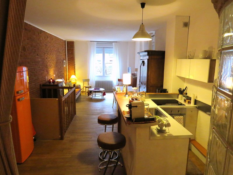 PETIT LOFT TOULOUSAIN CENTRE VILLE JEAN JAURES, vacation rental in Toulouse