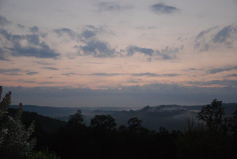 Une vue tôt le matin typique. Un bon moment pour marcher dans les bois et voir la faune.