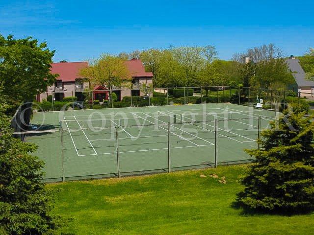 Bayside Tennis #2