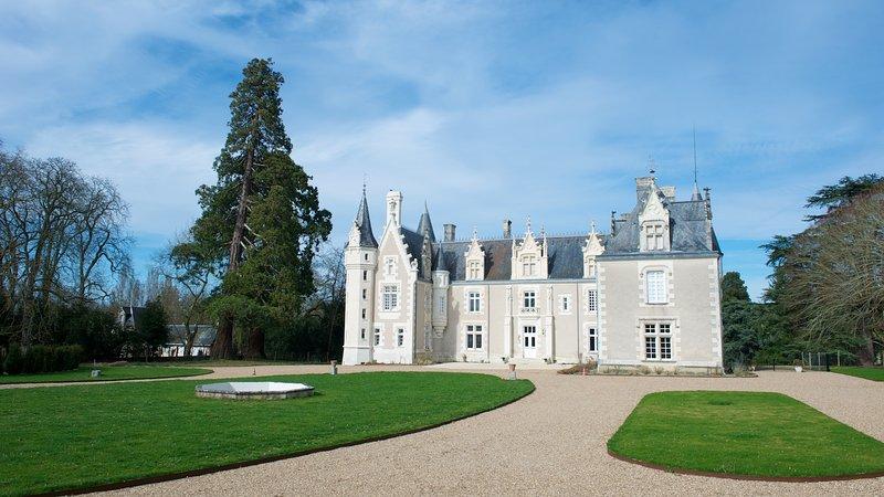 Chambre d'hôtes au château Vallée de la Loire, holiday rental in Montlouis-sur-Loire