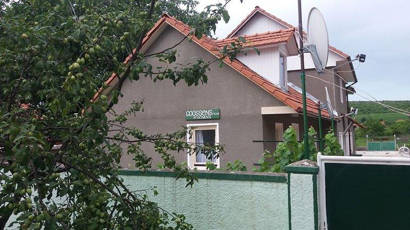Goossens apartments voor een vakantie in Roemenie, holiday rental in Arad