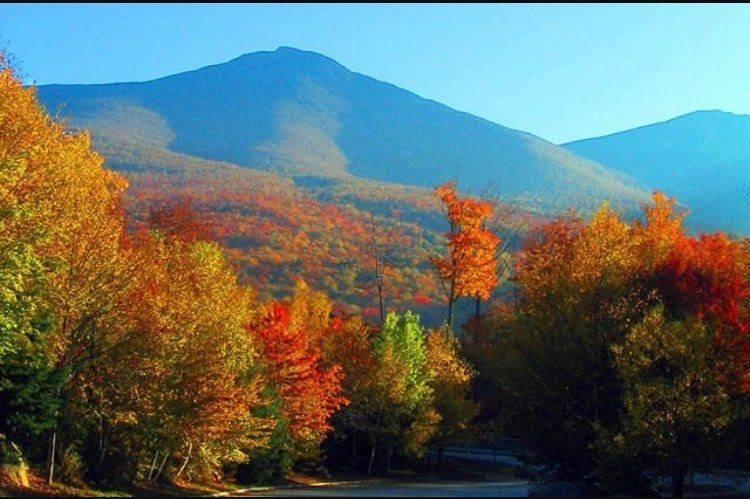 fall in the white moutains