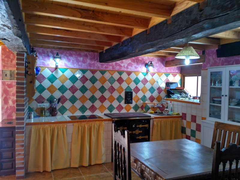 Colorful room kitchen with stove and wood stove. Dining for 6