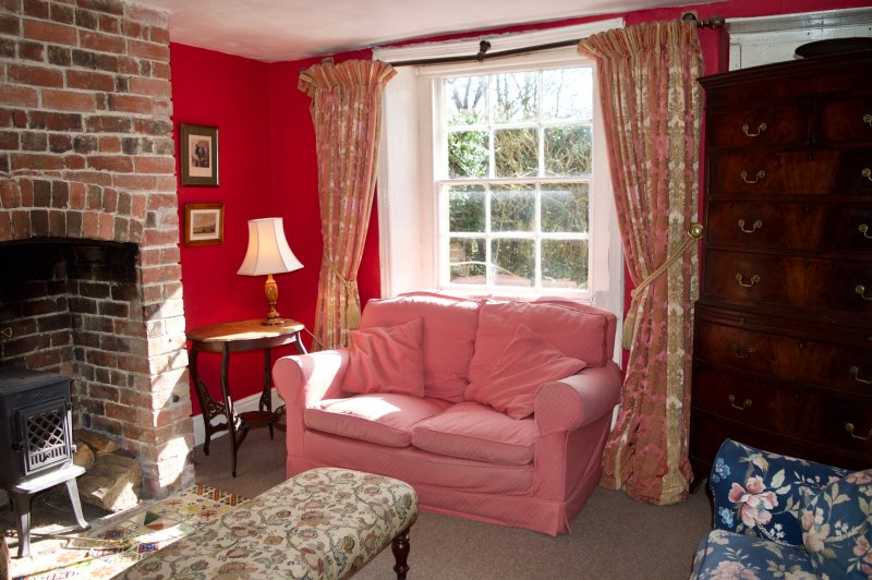 Sala de estar - quemador acogedor en el invierno, con sus paredes de color rojo y brillante madera