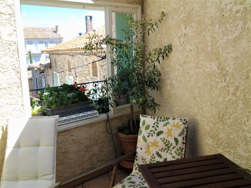 Nice house with terrace & Wifi, holiday rental in Paraza