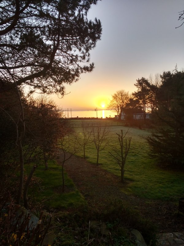 Winter sunrise over the entrance to Strangford Lough.