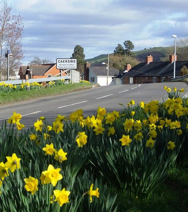Caersws pueblo está a sólo 5 minutos a pie y tiene una variedad de tiendas, bares, salones de té y locales para explorar.