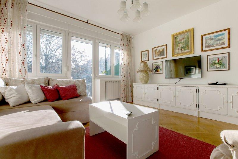 Salon avec canapé-lit double, télévision connectée et sortie sur la terrasse ensoleillée.