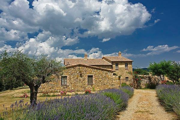 APPARTAMENTO IL NOBILE  IN AGRITURISMO PIANOIA, vakantiewoning in Pienza
