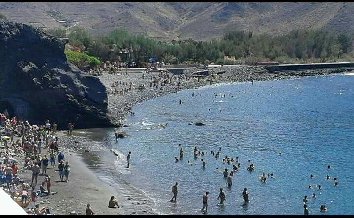 Beach of San Nicolás