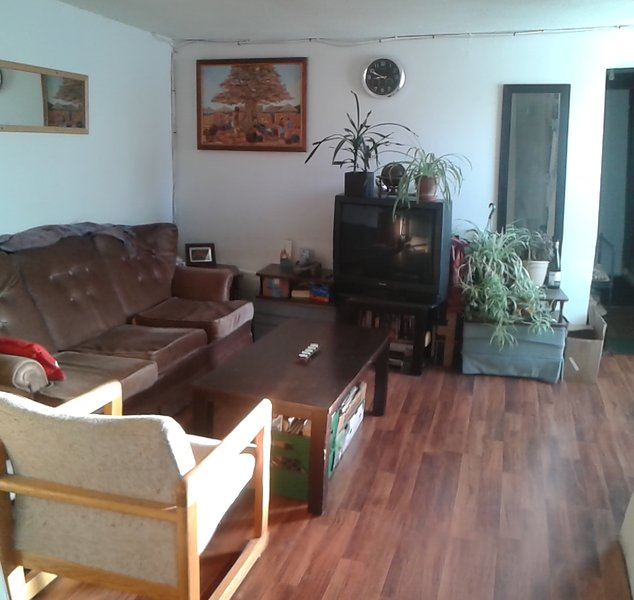 Relaxed Victorian Era home, holiday rental in Kingston