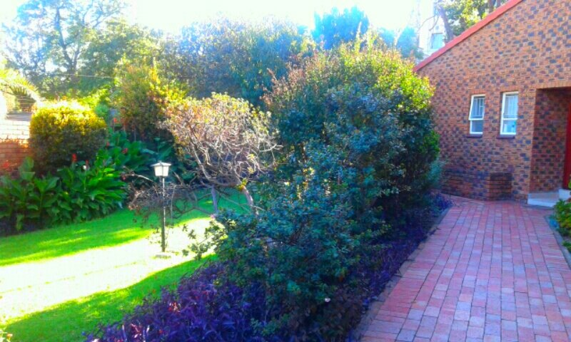 Jeds lovely cottage with pool. A luxurious home away from home, holiday rental in Rivonia