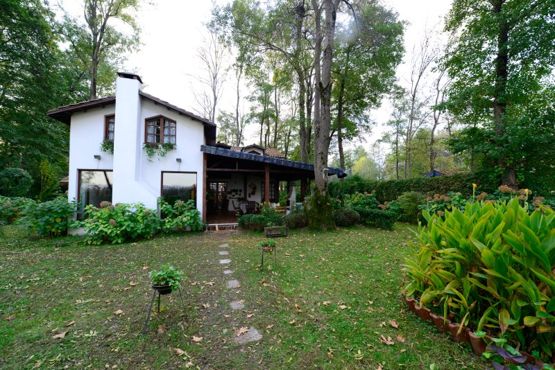 Beta Home Lake House-Hydrangea Villa, holiday rental in Izmit