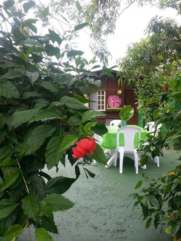 Bekijk de richting van het huis en een deel van de tuin met aanzitten aerea