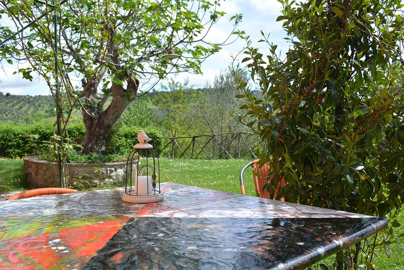 Holiday apartment with pool in Perugia, vacation rental in Perugia