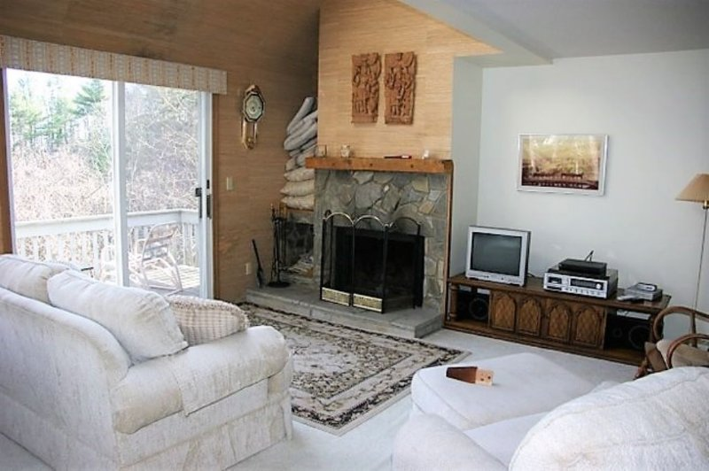Wood Fireplace in Living Room