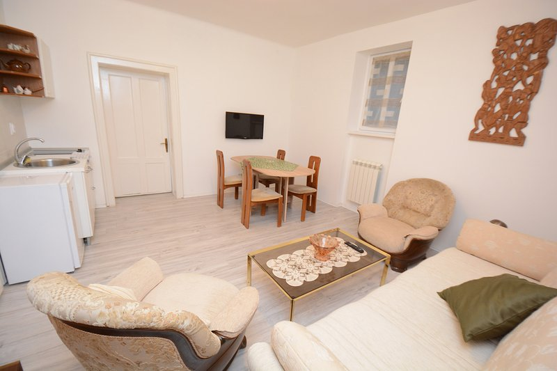 Guest House Jedro Apartment Spa 2, holiday rental in Dorcol
