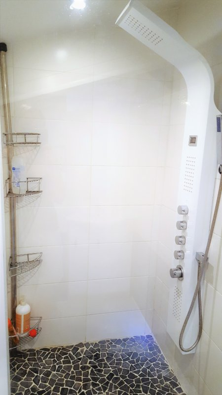 The shower and massage shower