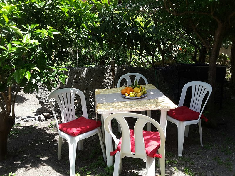 Private fruit garden with a dining area
