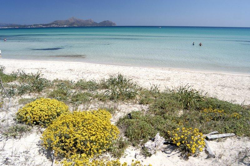 Hermosas playas de aguas cristalinas y arena blanca y fina