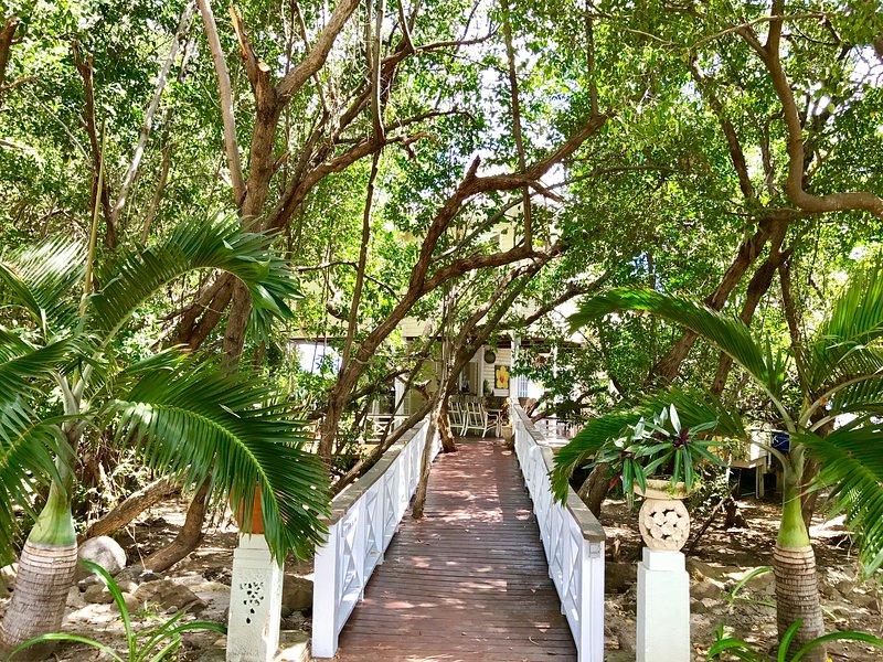 plaza de aparcamiento, caminar sobre el puente por los árboles de mangle a la casa de campo
