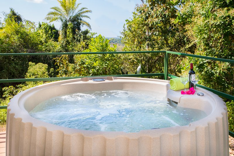 Villa Mariposa - Peace and Relax w/ocean view, holiday rental in Palo Seco