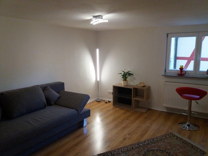Salón / dormitorio