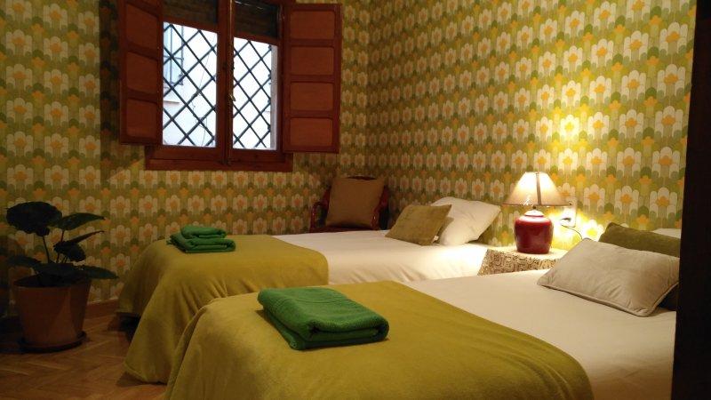 Green Room. 2 eenpersoonsbedden en een kledingkast