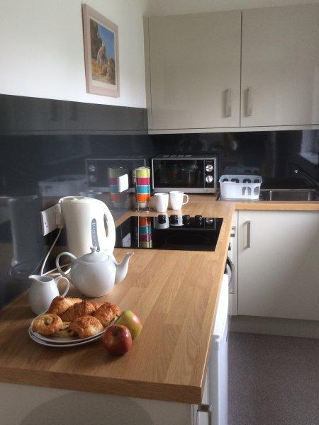 Neue Küche für alle Ihre Bedürfnisse