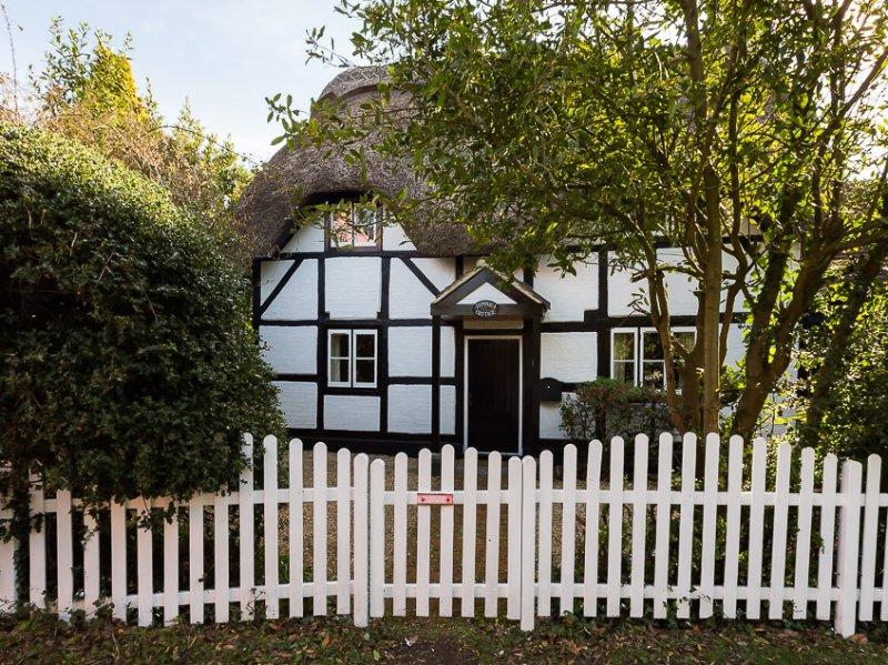 Japonica Cottage, holiday rental in Lyndhurst