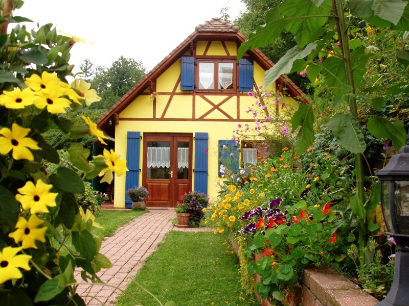 Our cottage in Alsace in July