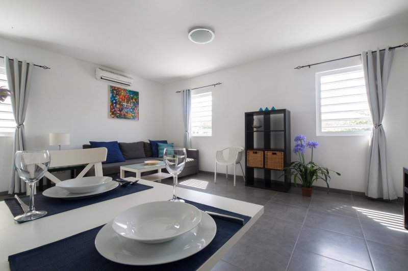 Modern fully furnished apartment on the first level with air conditioning
