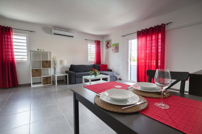 Modern fully furnished apartment on the first level with air conditioning in living room and bedr