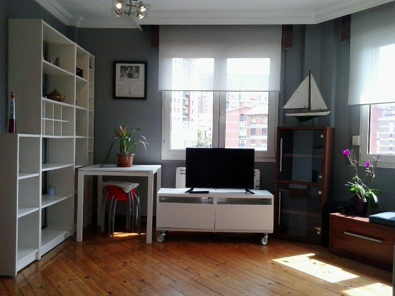 Apartamento en el corazón de Bilbao: Don Diego Etxea (NºReg. E-BI 311), holiday rental in Larrabetzu