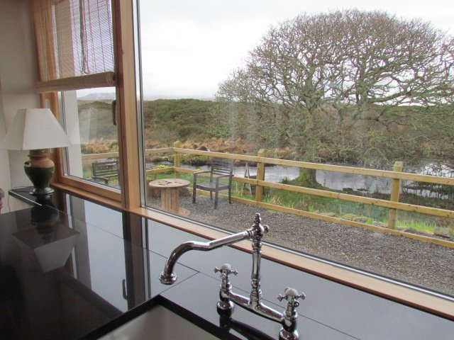 View from kitchen to Oak Tree.