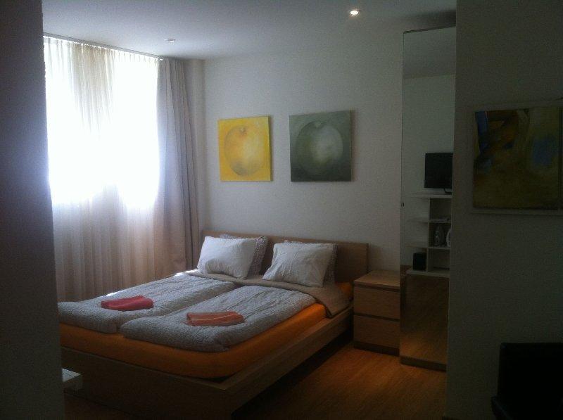 Apartment 2, Kraftstrasse 30, holiday rental in Zurich
