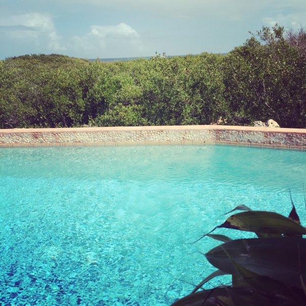 Private pool at Mangrove Villa.