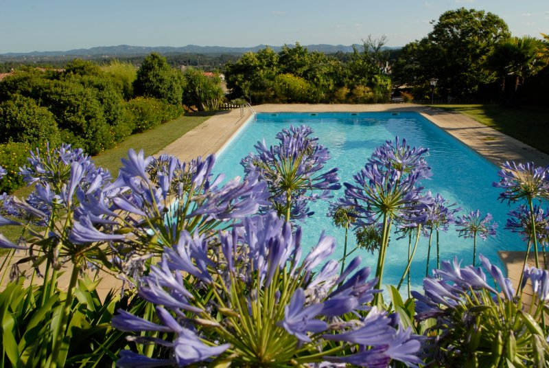 Quinta de Santa Teresinha - Villa with salt water swimming pool and gardens, holiday rental in Vila de Rei