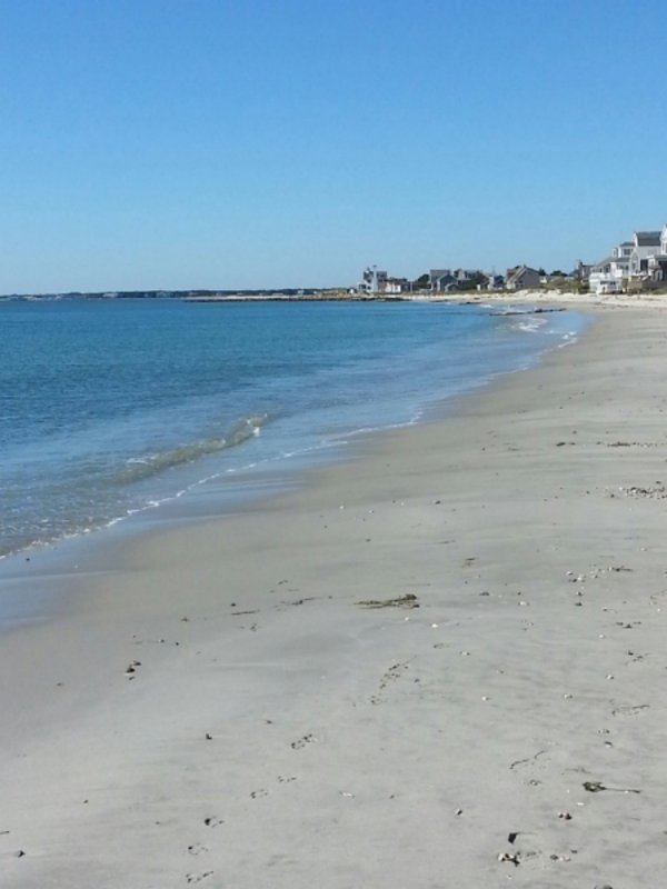 Walk to South Village Beach in 15 minutes, or paddle to here from the house!