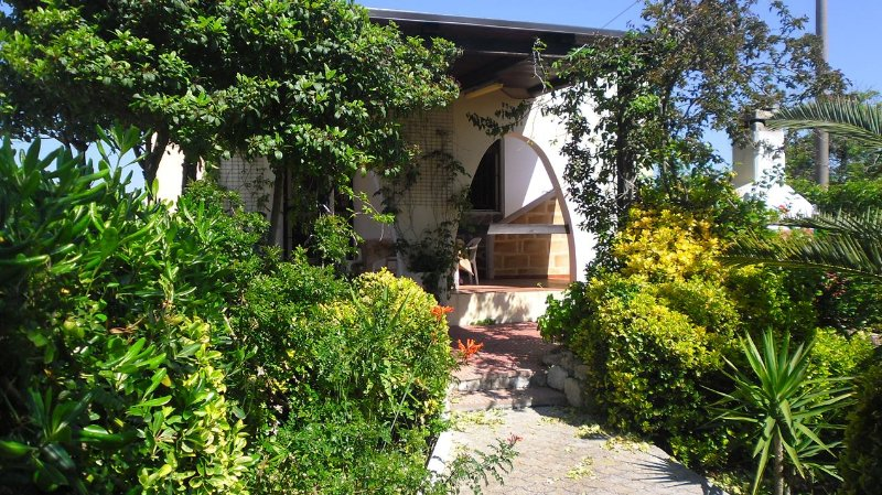Entrance from the garden