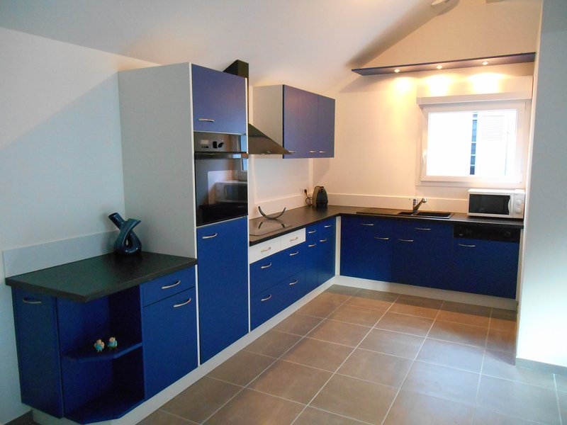 Cuisine équipé, vitro céramique, frigo, four, lave vaisselle, micro ondes.