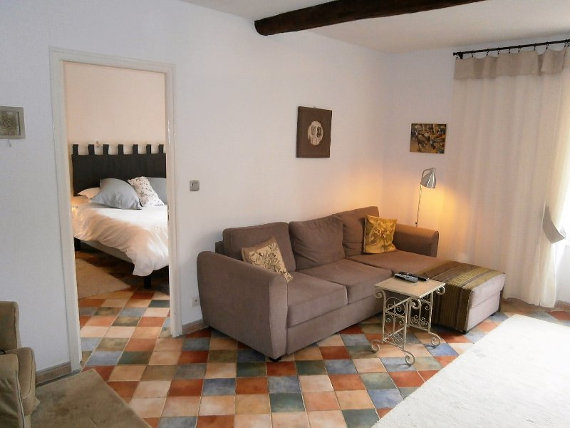 Stylish, bright and spacious apartment in lively Saint-Chinian, holiday rental in Saint-Chinian
