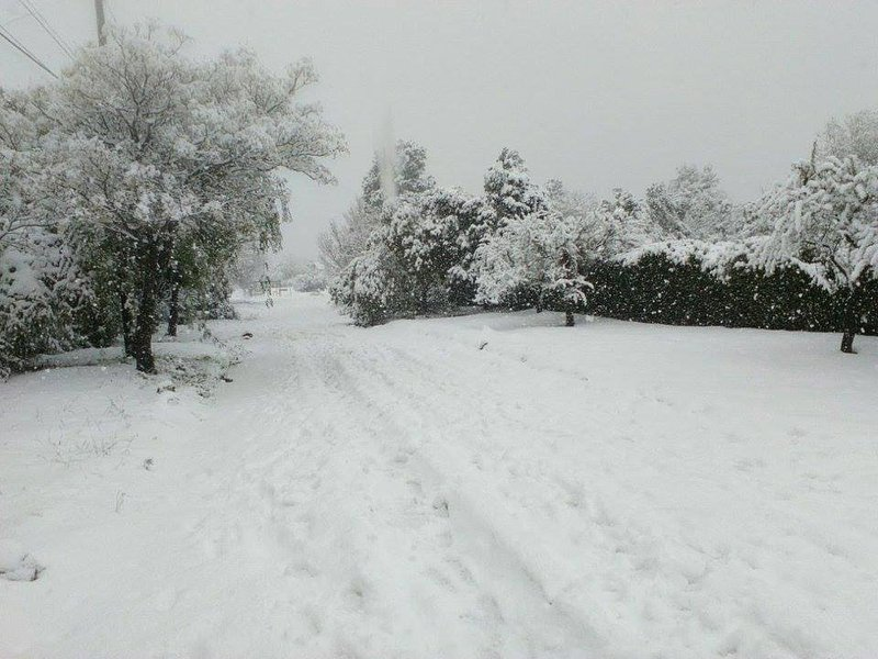 the great snowfall July 2016