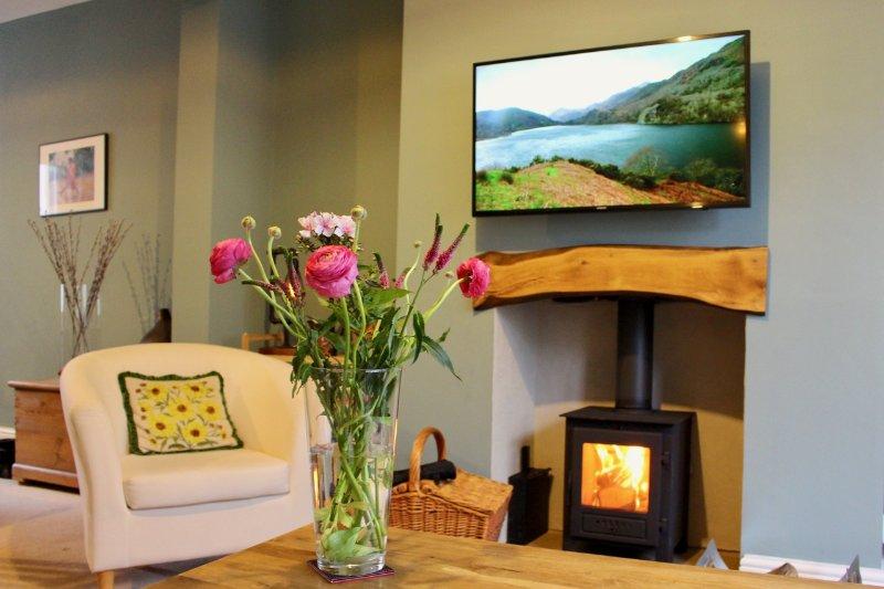 Neu mit Log-Brenner und Smart TV Renoviertes
