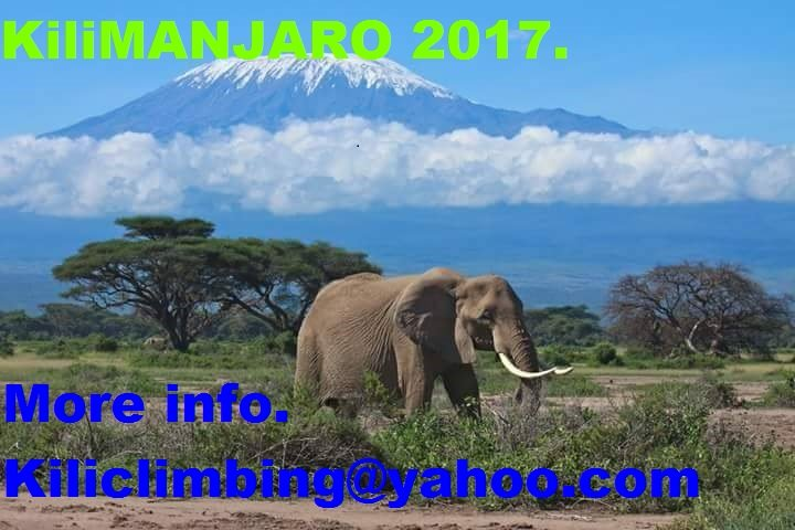 452256, holiday rental in Arusha