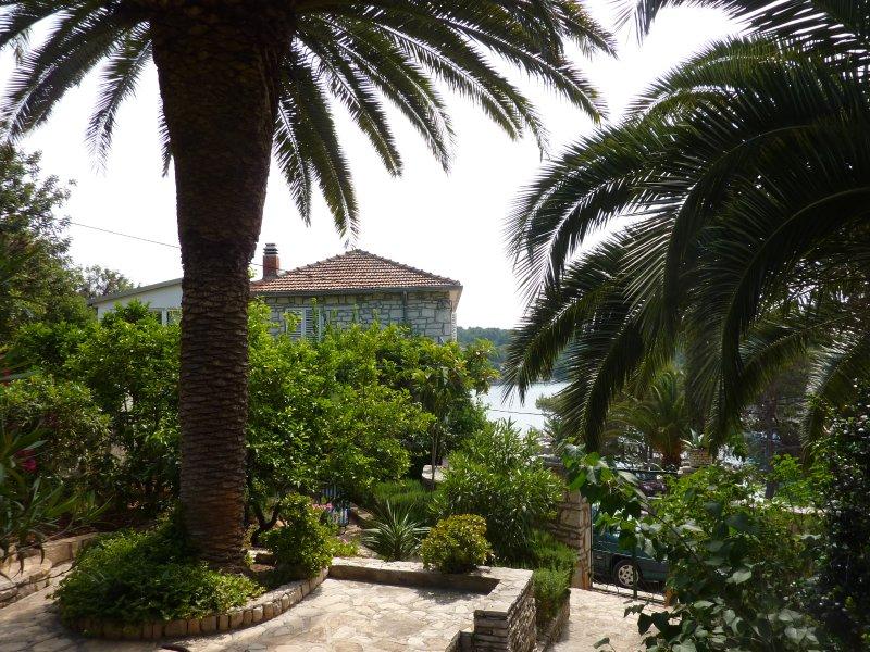 Insel Solta, location de vacances à Rogac