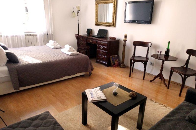 PROMO - 35%, Belgrade apartment, City CENTER, holiday rental in Dorcol