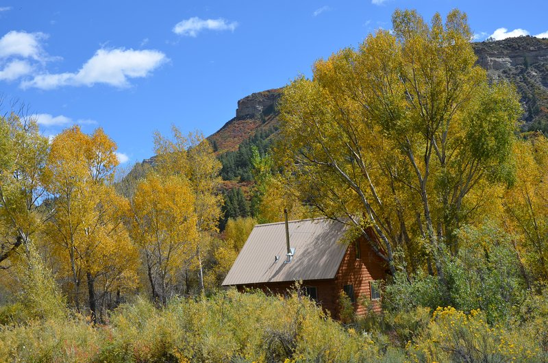 San Juan River Cabin (1bedroom + loft), holiday rental in Pagosa Springs