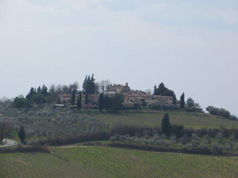 Borgo Tuopina - Casa Oliva, vacation rental in Castellina In Chianti