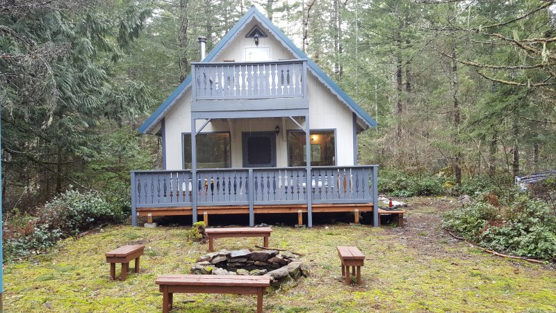 Get Away To Mt Rainier In A Dog Friendly Cabin Updated 2019
